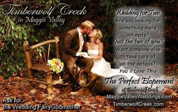 Timberwolf Creek